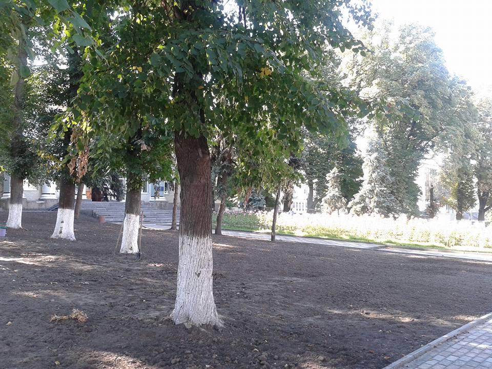 парк_шевч3
